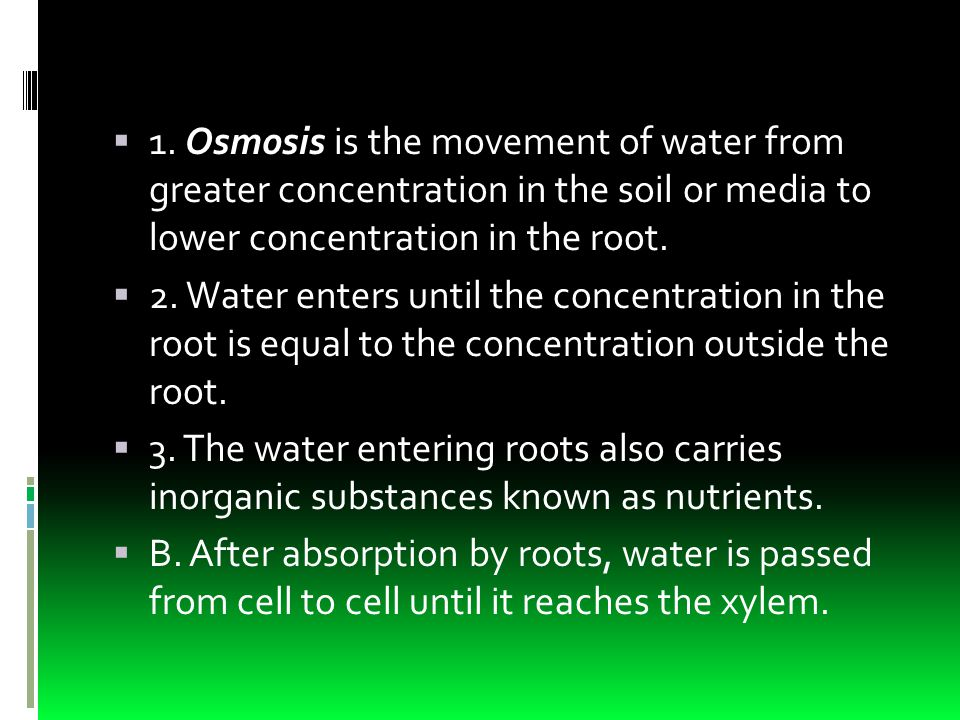  1. Osmosis is the movement of water from greater concentration in the soil or media to lower concentration in the root.  2. Water enters until the