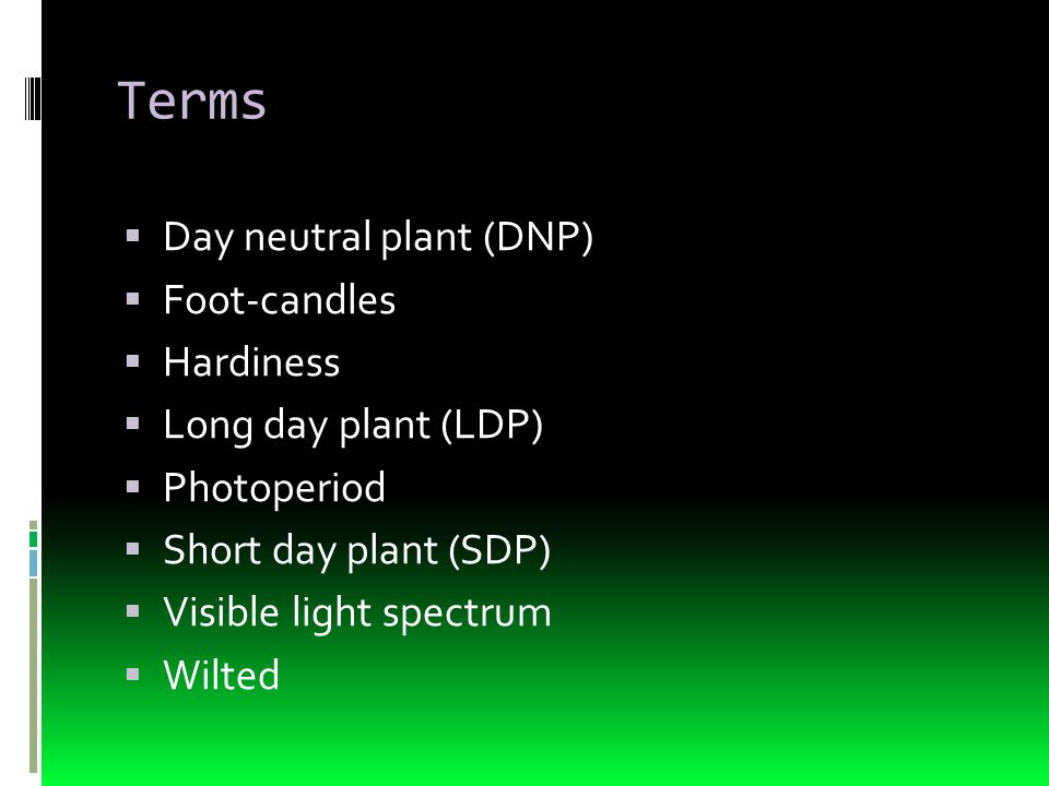 Terms  Day neutral plant (DNP)  Foot-candles  Hardiness  Long day plant (LDP)  Photoperiod  Short day plant (SDP)  Visible light spectrum  Wil