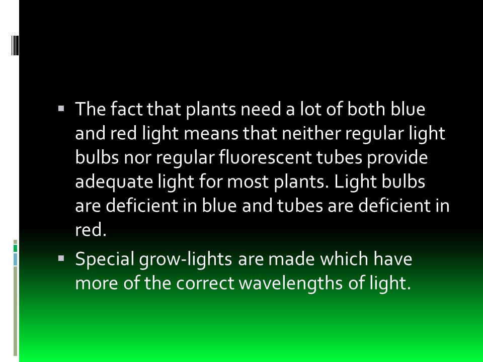  The fact that plants need a lot of both blue and red light means that neither regular light bulbs nor regular fluorescent tubes provide adequate light for most plants.
