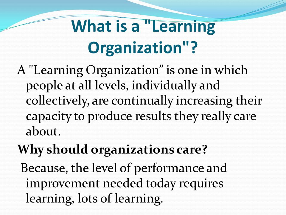 What is a Learning Organization .