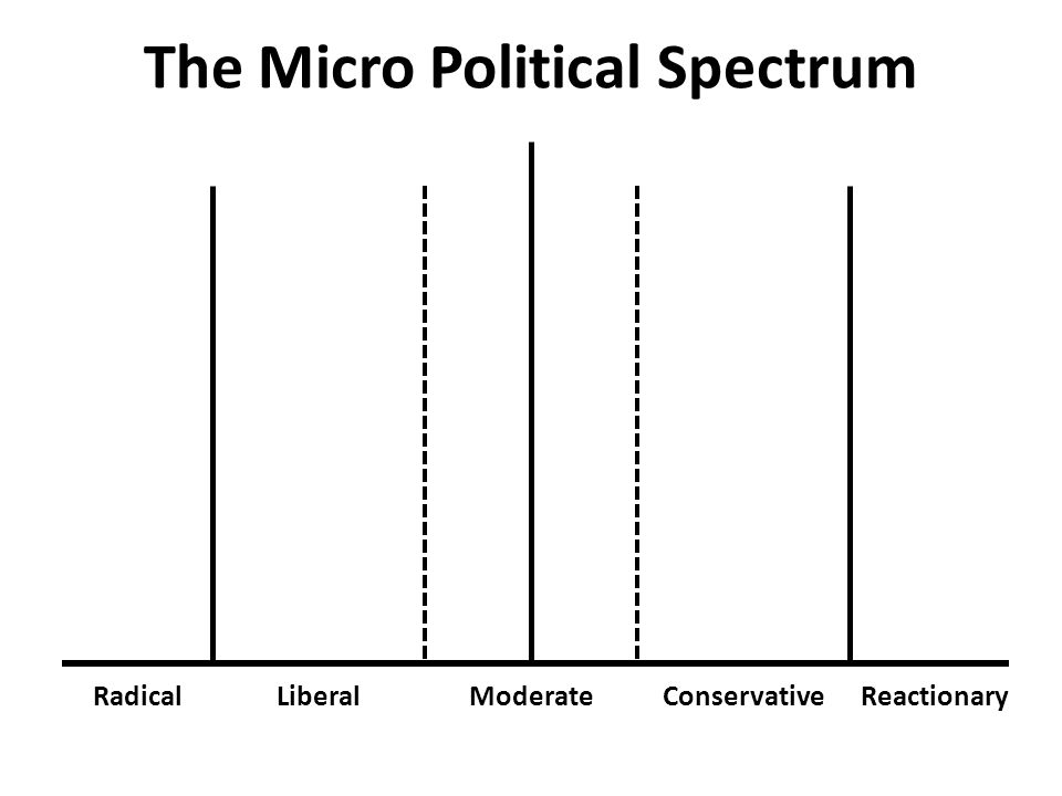 The Micro Political Spectrum RadicalLiberalModerateConservativeReactionary