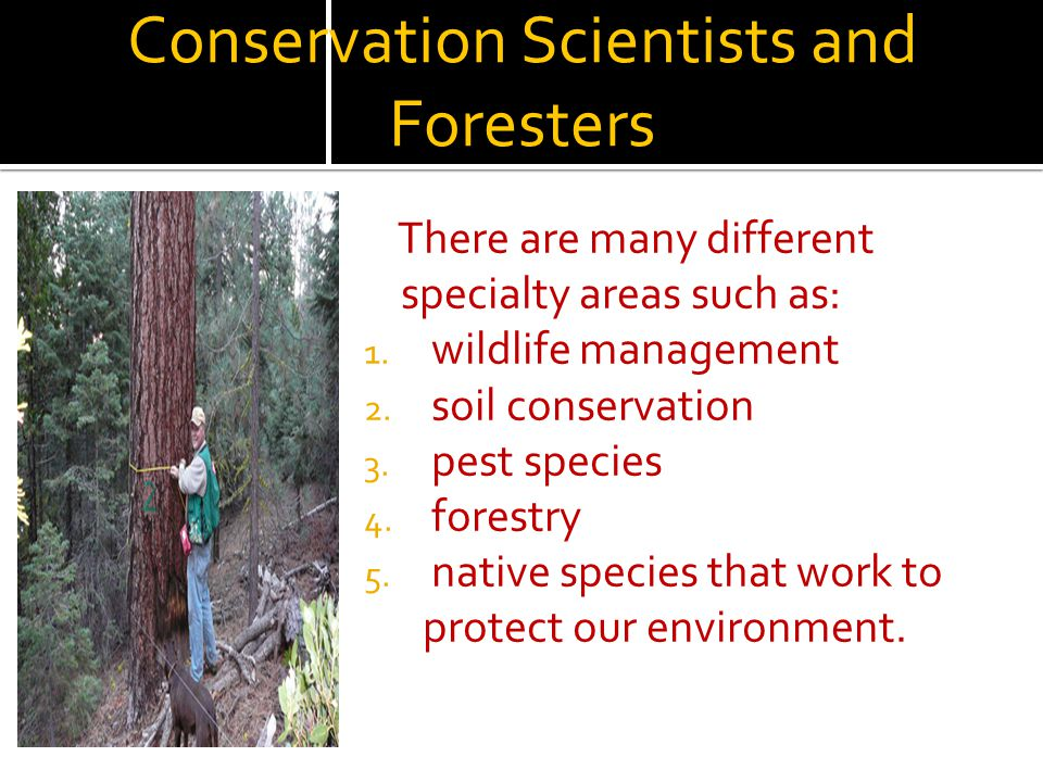 Conservation Scientists and Foresters There are many different specialty areas such as: 1. wildlife management 2. soil conservation 3. pest species 4.