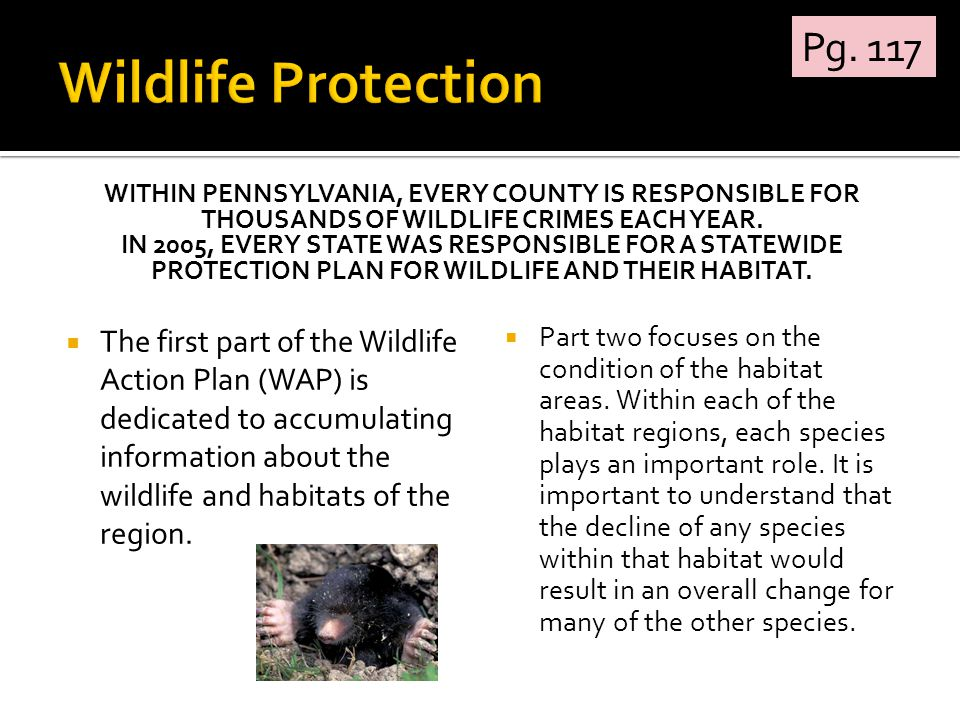 WITHIN PENNSYLVANIA, EVERY COUNTY IS RESPONSIBLE FOR THOUSANDS OF WILDLIFE CRIMES EACH YEAR. IN 2005, EVERY STATE WAS RESPONSIBLE FOR A STATEWIDE PROT