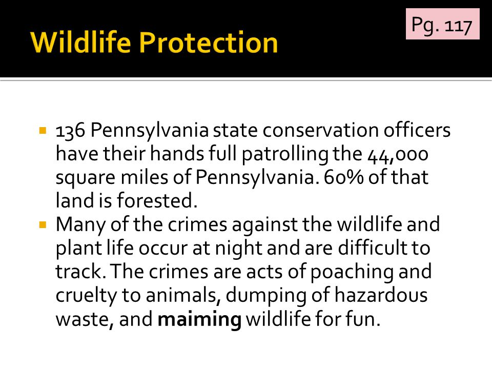  136 Pennsylvania state conservation officers have their hands full patrolling the 44,000 square miles of Pennsylvania.