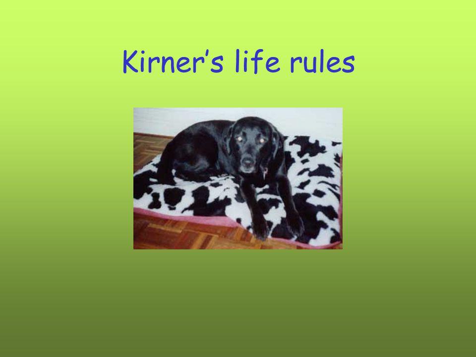 Kirner's life rules
