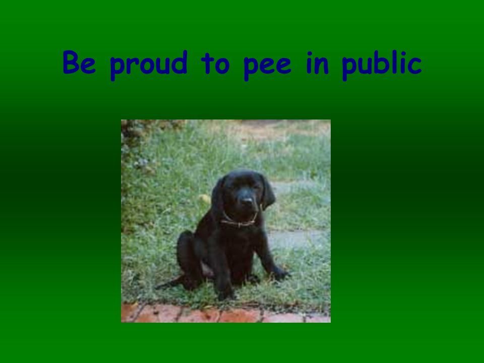 Be proud to pee in public