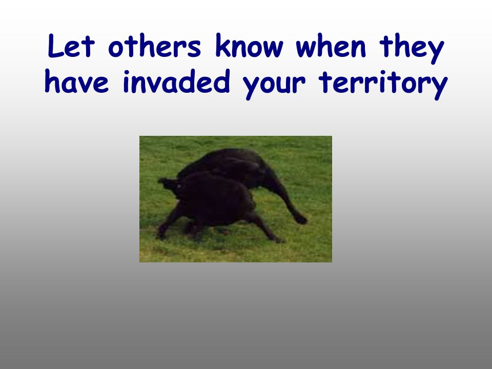 Let others know when they have invaded your territory