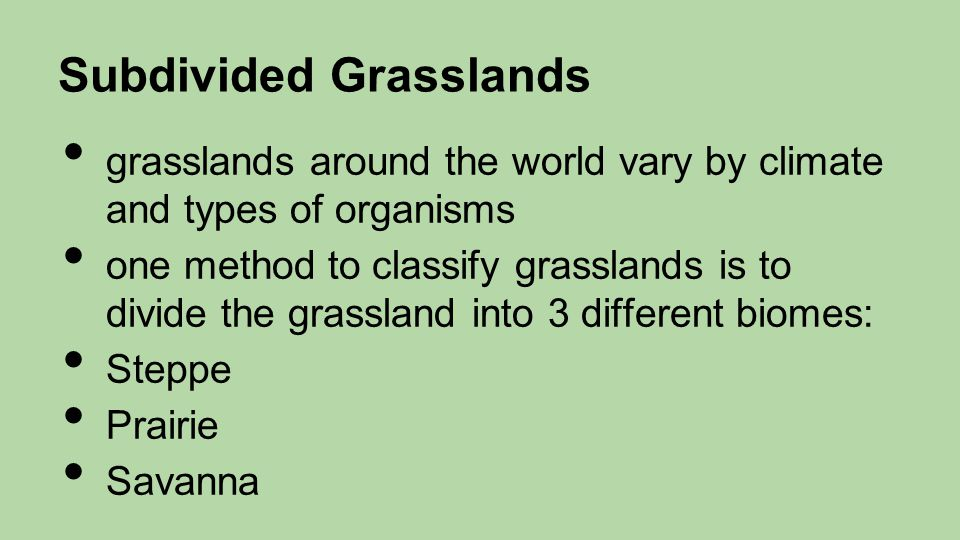 Subdivided Grasslands grasslands around the world vary by climate and types of organisms one method to classify grasslands is to divide the grassland into 3 different biomes: Steppe Prairie Savanna