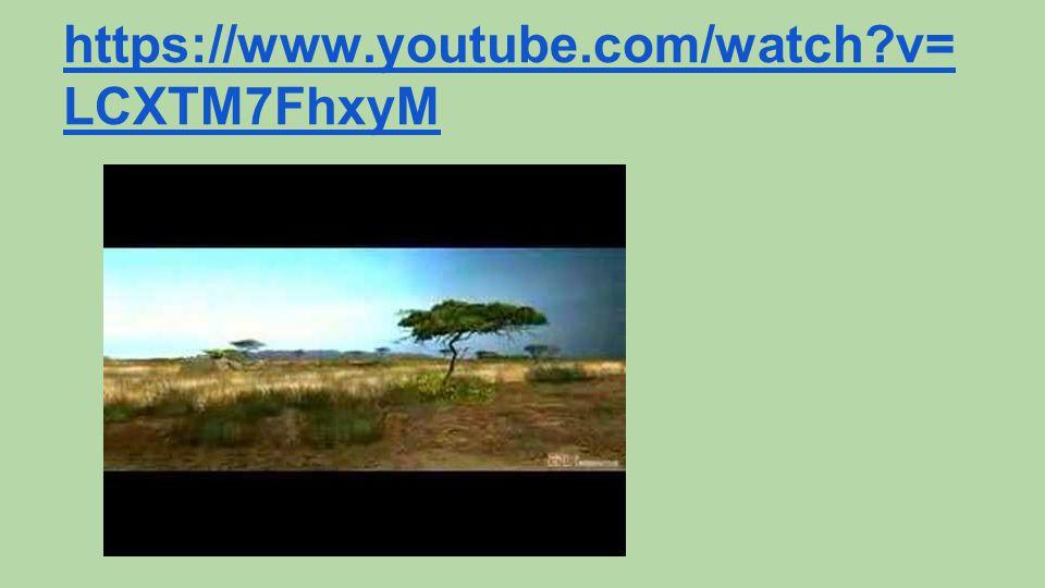 https://www.youtube.com/watch?v= LCXTM7FhxyM