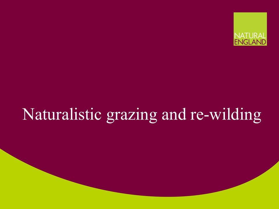 Naturalistic grazing and re-wilding