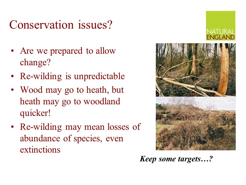 Conservation issues? Are we prepared to allow change? Re-wilding is unpredictable Wood may go to heath, but heath may go to woodland quicker! Re-wildi