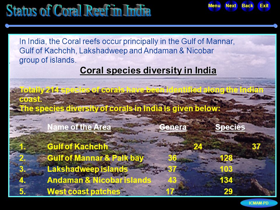 ICMAM-PD MenuNextBackExit In India, the Coral reefs occur principally in the Gulf of Mannar, Gulf of Kachchh, Lakshadweep and Andaman & Nicobar group