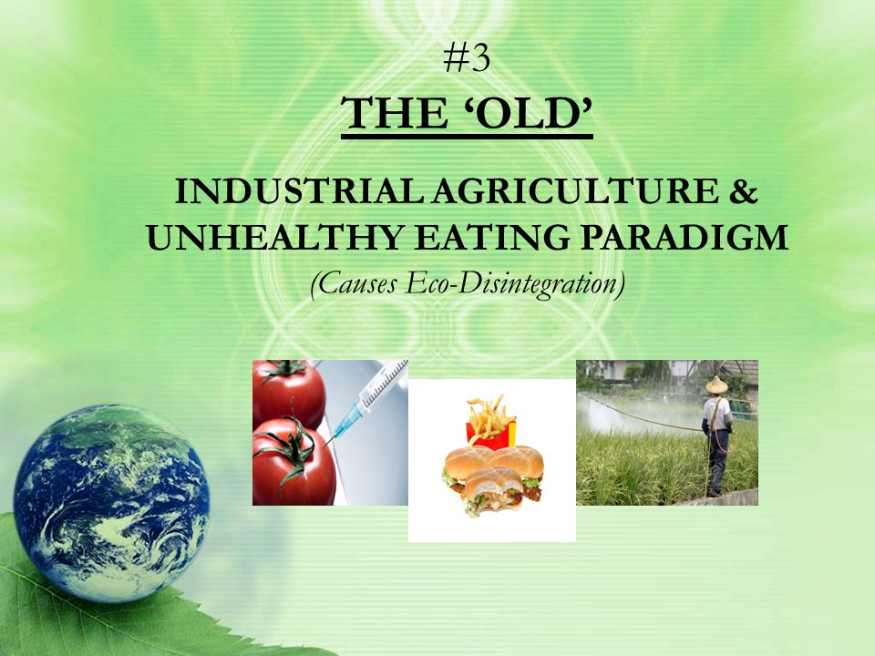 #2 THE 'BOLD' SIMPLE ABUNDANCE LIFESTYLE PARADIGM (Supports Eco-Integration)