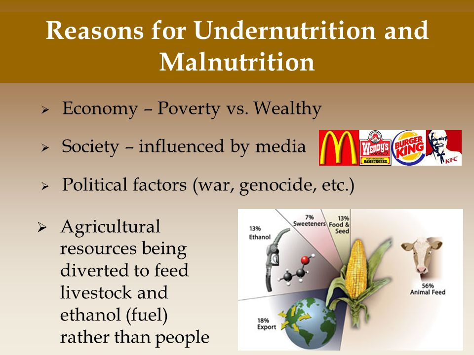  Economy – Poverty vs. Wealthy  Society – influenced by media  Political factors (war, genocide, etc.) Reasons for Undernutrition and Malnutrition
