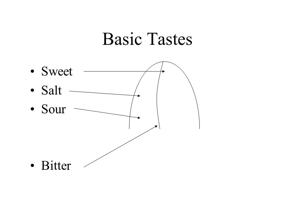 Basic Tastes Sweet Salt Sour Bitter