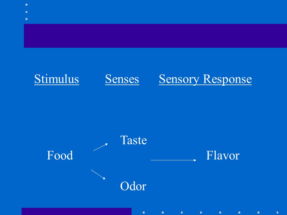 Stimulus Senses Sensory Response Taste FoodFlavor Odor