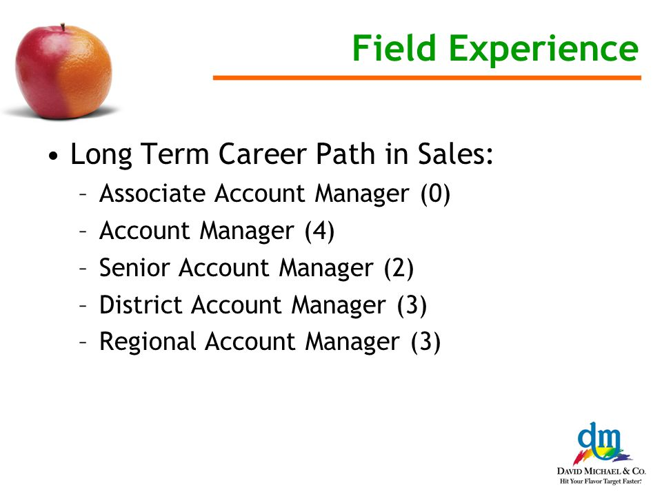 Field Experience Long Term Career Path in Sales: –Associate Account Manager (0) –Account Manager (4) –Senior Account Manager (2) –District Account Manager (3) –Regional Account Manager (3)