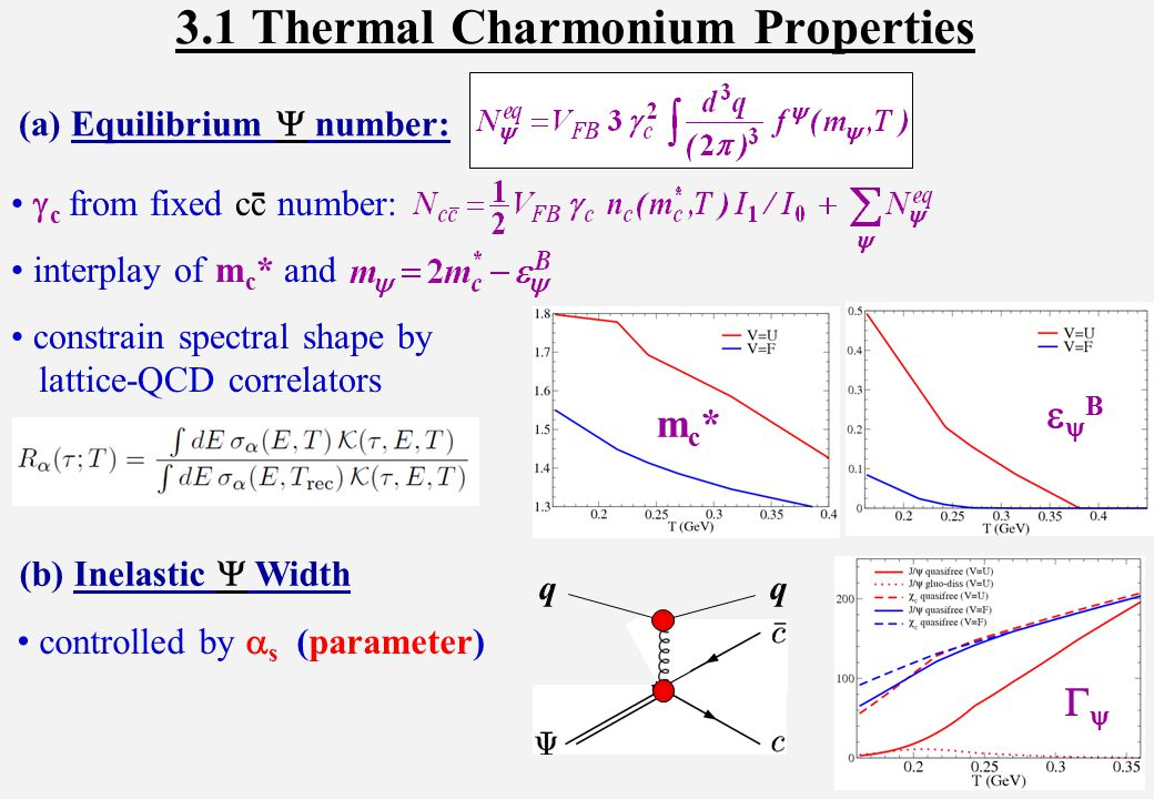  c from fixed cc number: interplay of m c * and constrain spectral shape by lattice-QCD correlators 3.1 Thermal Charmonium Properties mc*mc* BB (a) Equilibrium  number: -  q (b) Inelastic  Width controlled by  s (parameter)