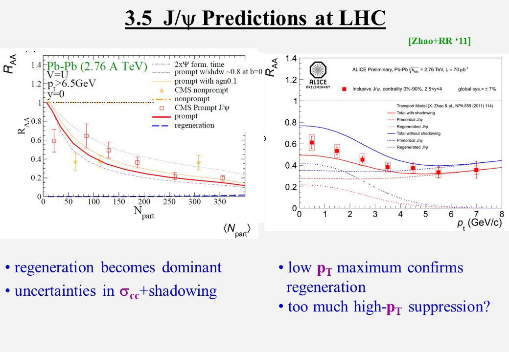 3.5 J/  Predictions at LHC regeneration becomes dominant uncertainties in  cc +shadowing [Zhao+RR '11 ] low p T maximum confirms regeneration too much high-p T suppression