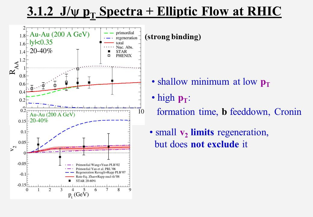 3.1.2 J/  p T Spectra + Elliptic Flow at RHIC small v 2 limits regeneration, but does not exclude it (strong binding) shallow minimum at low p T high p T : formation time, b feeddown, Cronin