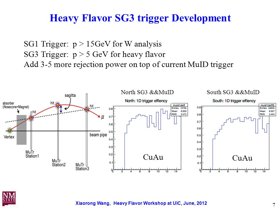 Xiaorong Wang, Heavy Flavor Workshop at UIC, June, 2012 7 Heavy Flavor SG3 trigger Development North SG3 &&MuID South SG3 &&MuID CuAu SG1 Trigger: p > 15GeV for W analysis SG3 Trigger: p > 5 GeV for heavy flavor Add 3-5 more rejection power on top of current MuID trigger