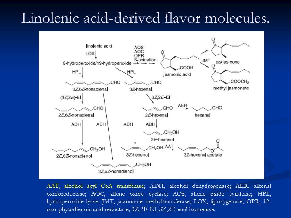 Linolenic acid-derived flavor molecules.