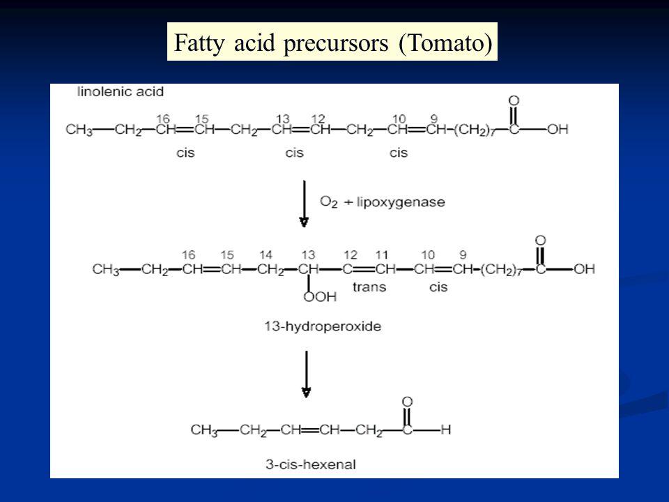 Fatty acid precursors (Tomato)