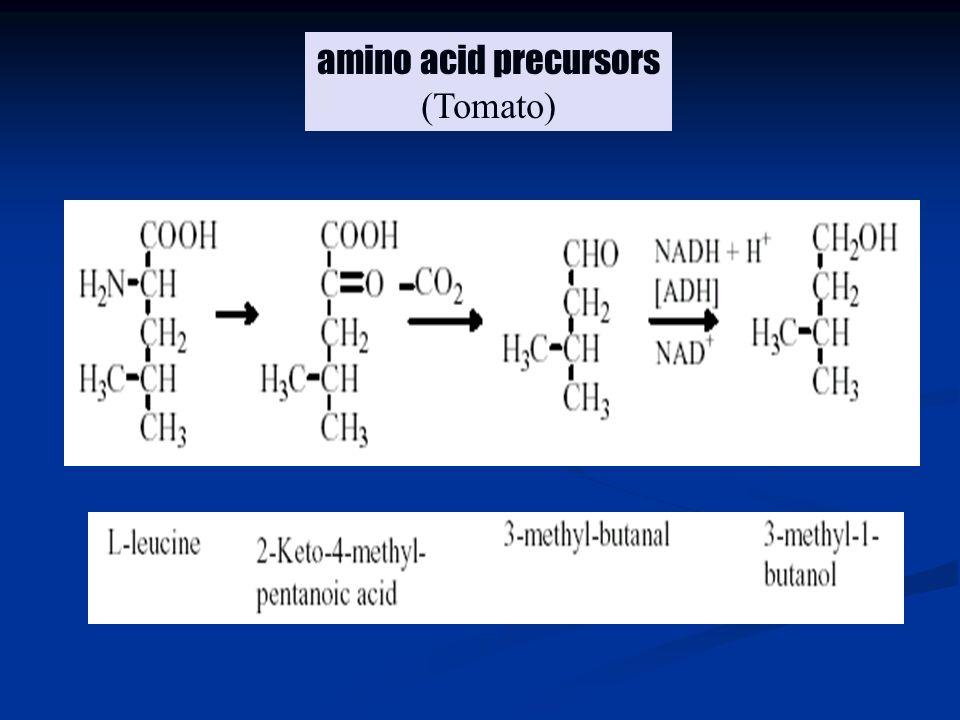 amino acid precursors (Tomato)