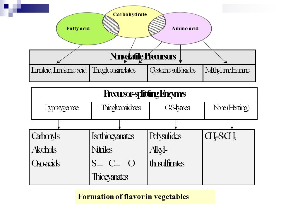 Carbohydrate Fatty acidAmino acid Formation of flavor in vegetables