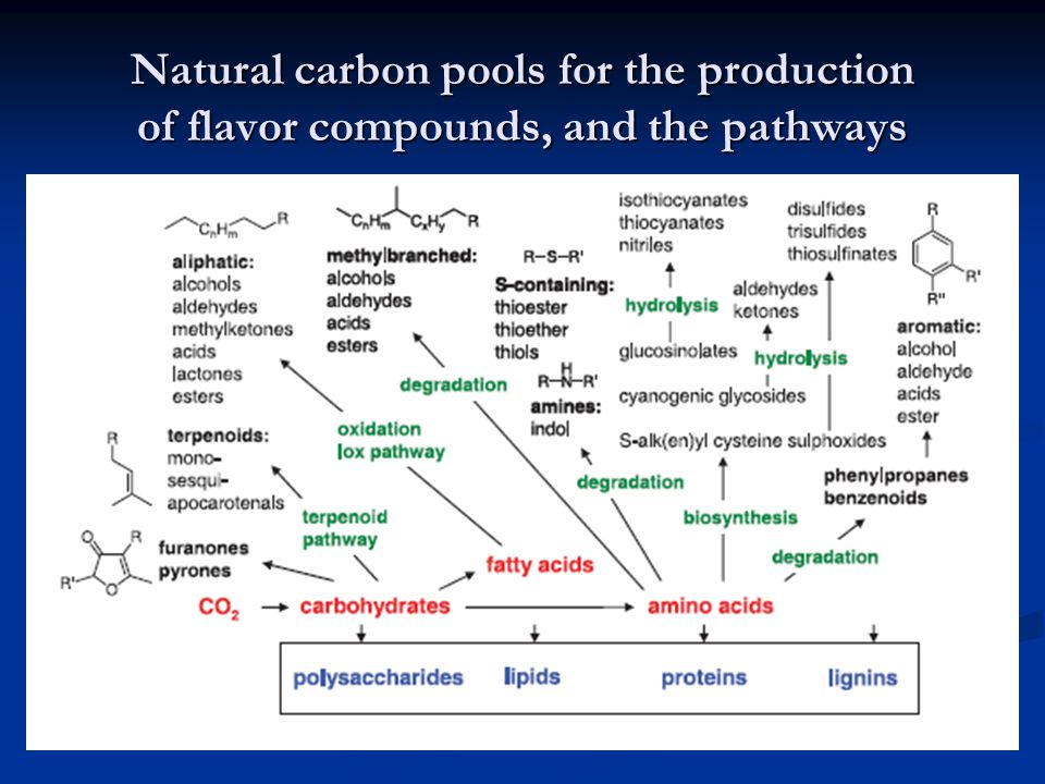 Natural carbon pools for the production of flavor compounds, and the pathways