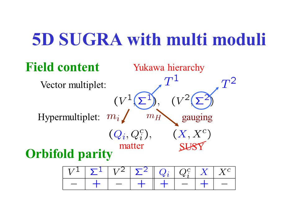 5D SUGRA with multi moduli Field content Vector multiplet: Hypermultiplet: Orbifold parity Yukawa hierarchy SUSY gauging matter
