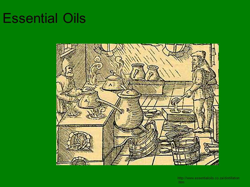 Essential Oils http://www.essentialoils.co.za/distillation.htm