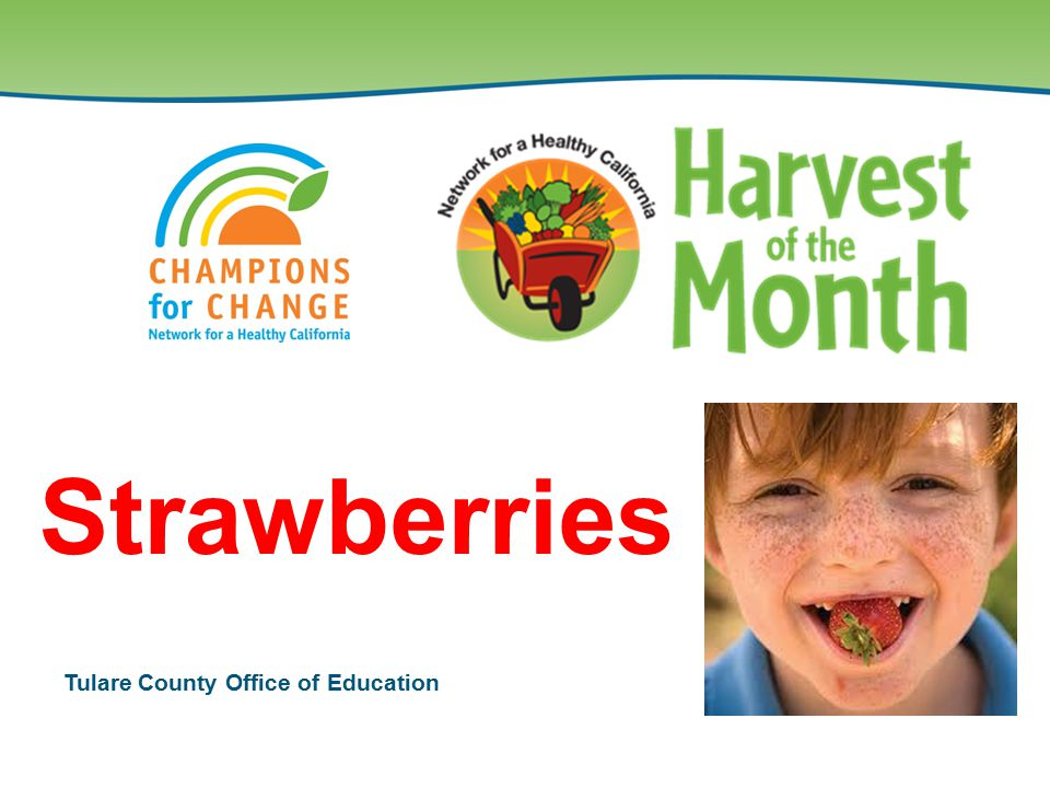 Tulare County Office of Education Strawberries