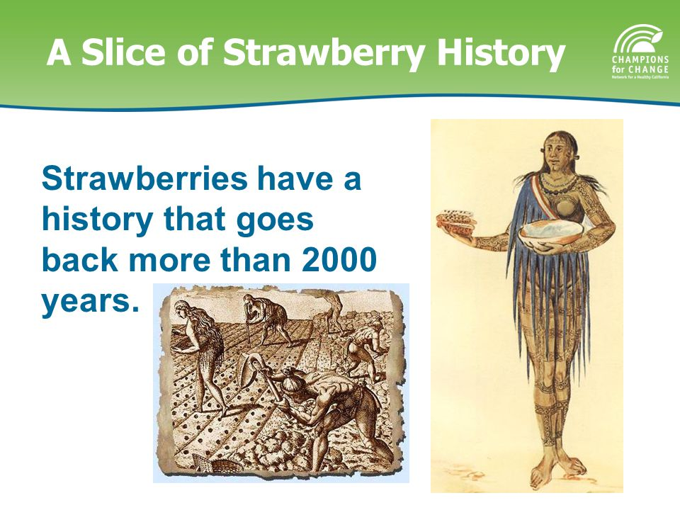 A Slice of Strawberry History Strawberries have a history that goes back more than 2000 years.