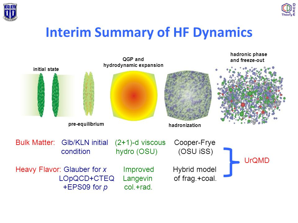 Interim Summary of HF Dynamics initial state pre-equilibrium QGP and hydrodynamic expansion hadronization hadronic phase and freeze-out Bulk Matter: G