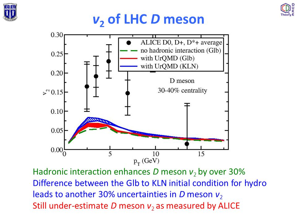 Hadronic interaction enhances D meson v 2 by over 30% Difference between the Glb to KLN initial condition for hydro leads to another 30% uncertainties