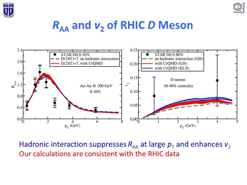 R AA and v 2 of RHIC D Meson Hadronic interaction suppresses R AA at large p T and enhances v 2 Our calculations are consistent with the RHIC data