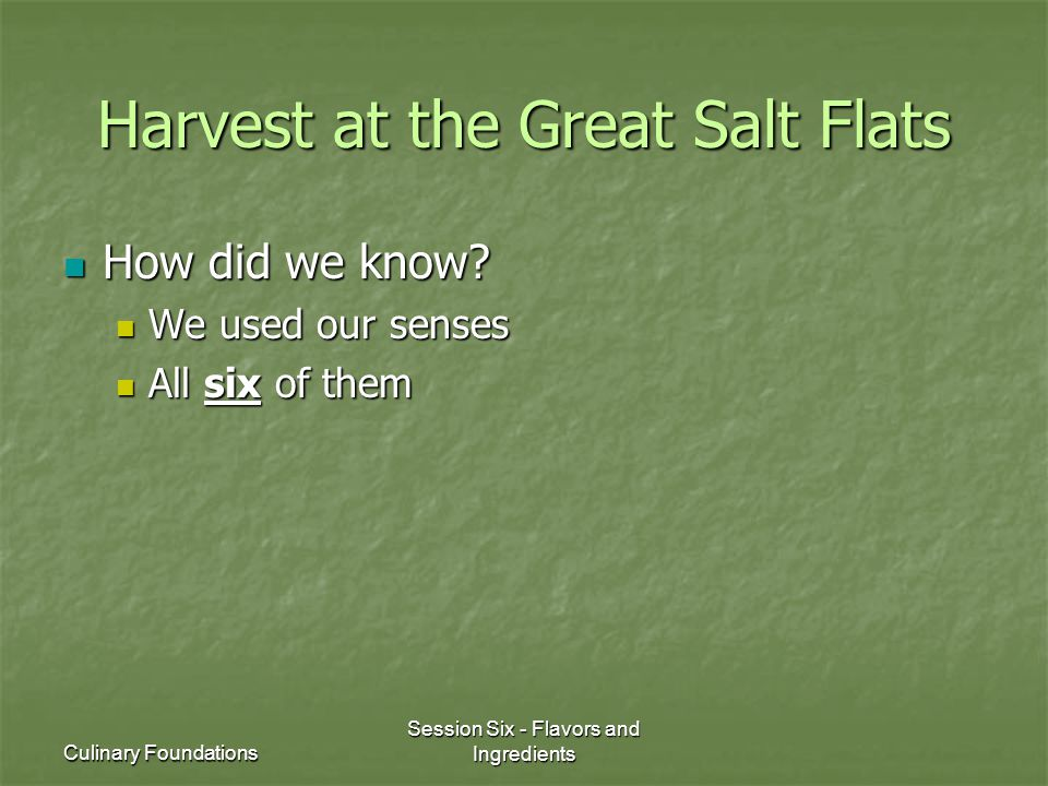 Culinary Foundations Session Six - Flavors and Ingredients Harvest at the Great Salt Flats How did we know.
