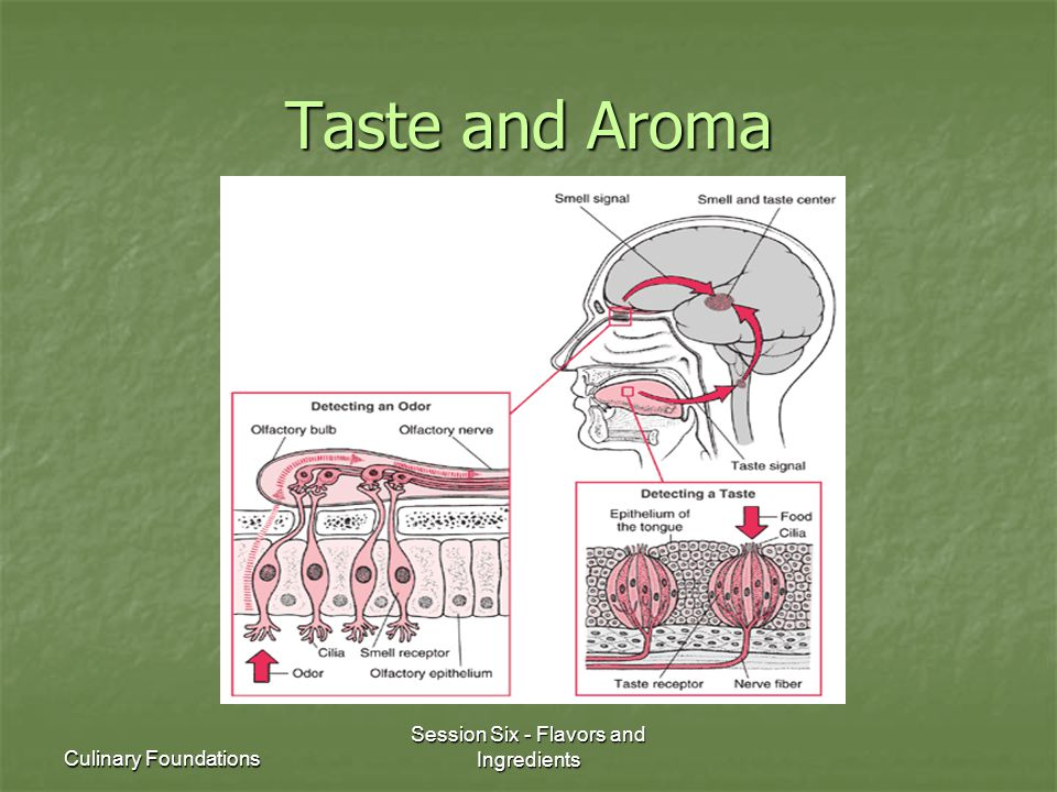 Culinary Foundations Session Six - Flavors and Ingredients Taste and Aroma