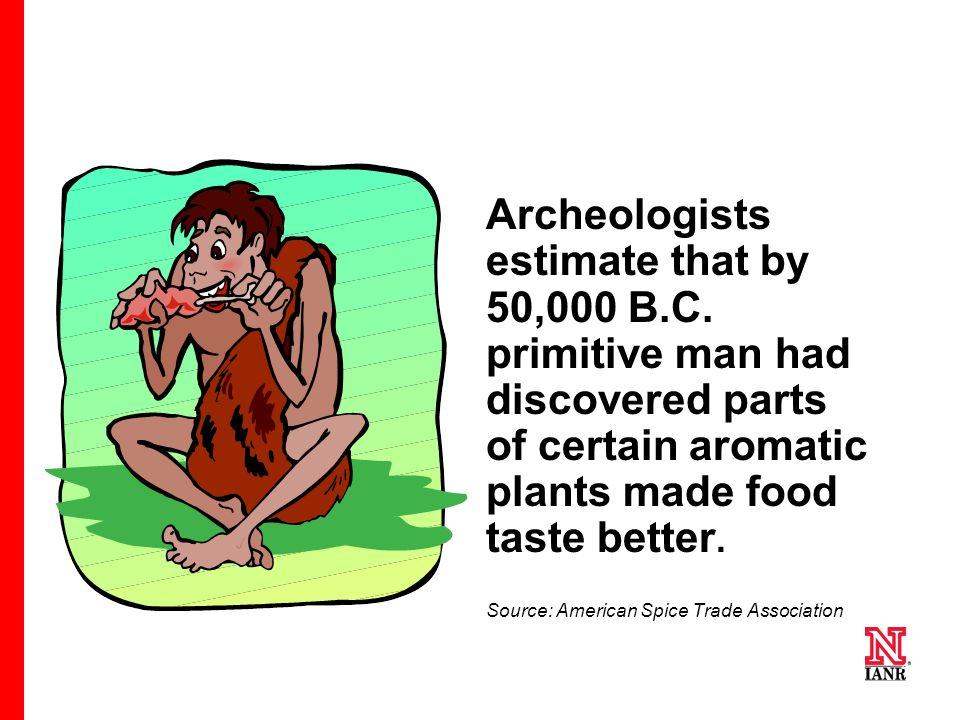 4 4 4 Archeologists estimate that by 50,000 B.C.