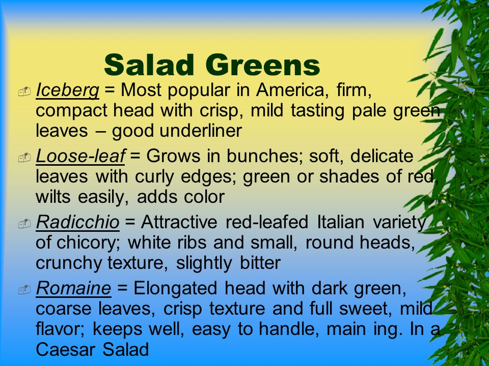 Salad Greens  Iceberg = Most popular in America, firm, compact head with crisp, mild tasting pale green leaves – good underliner  Loose-leaf = Grows