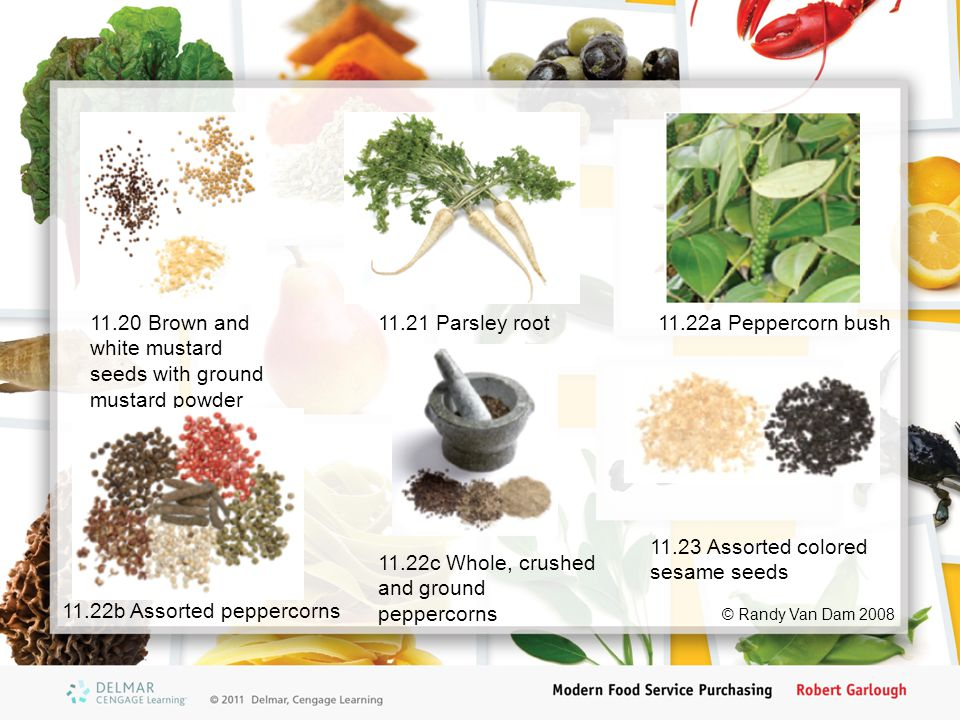 11.20 Brown and white mustard seeds with ground mustard powder 11.21 Parsley root11.22a Peppercorn bush 11.22b Assorted peppercorns 11.22c Whole, crus