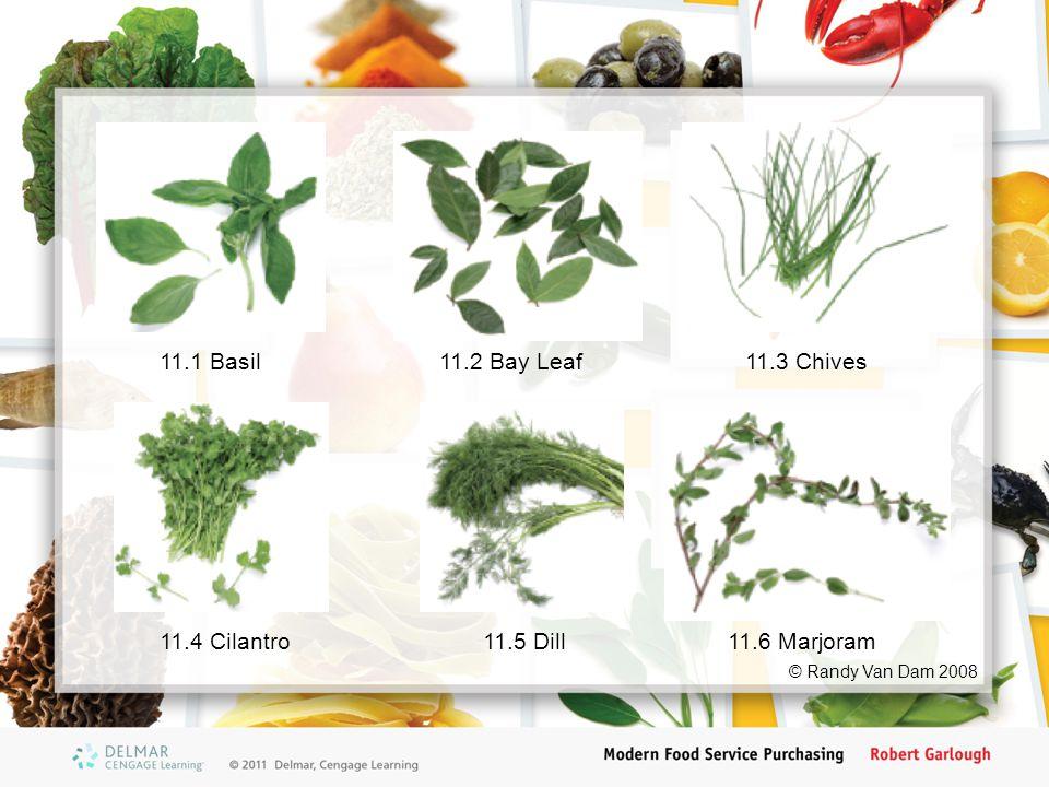 11.1 Basil11.2 Bay Leaf11.3 Chives 11.4 Cilantro11.5 Dill11.6 Marjoram © Randy Van Dam 2008