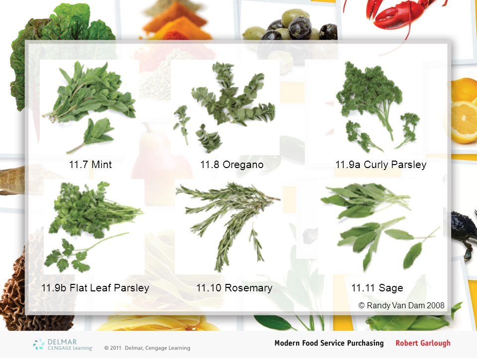 11.7 Mint11.8 Oregano11.9a Curly Parsley 11.9b Flat Leaf Parsley11.10 Rosemary11.11 Sage © Randy Van Dam 2008