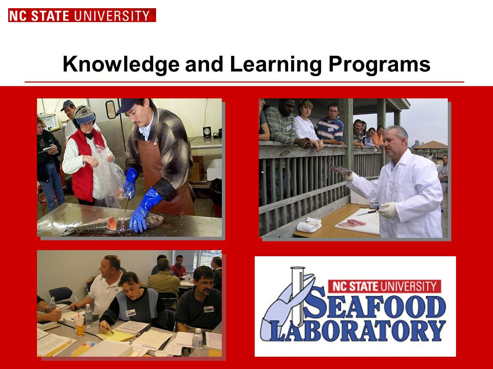 Knowledge and Learning Programs