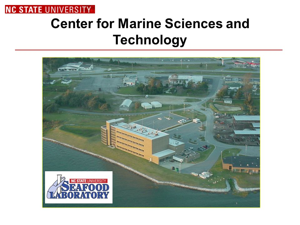 Center for Marine Sciences and Technology