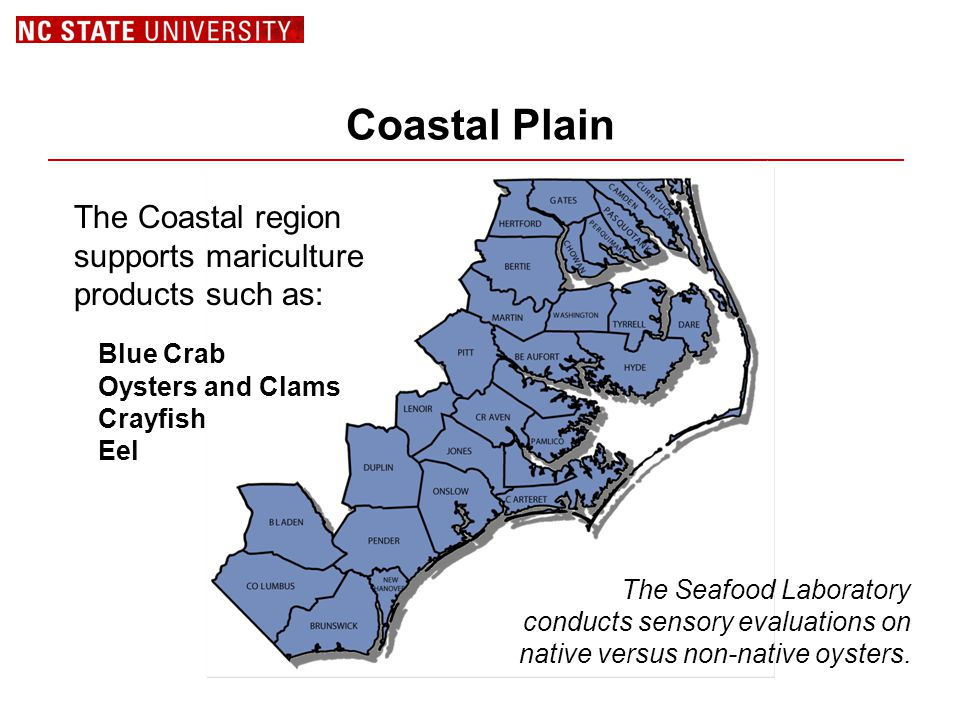 Coastal Plain The Coastal region supports mariculture products such as: Blue Crab Oysters and Clams Crayfish Eel The Seafood Laboratory conducts sensory evaluations on native versus non-native oysters.