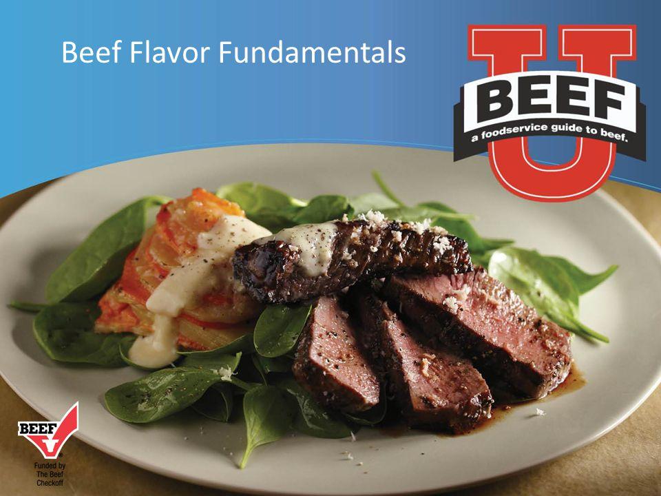 Beef Flavor Fundamentals
