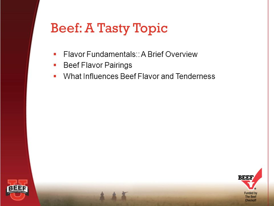  Flavor Fundamentals:: A Brief Overview  Beef Flavor Pairings  What Influences Beef Flavor and Tenderness Beef: A Tasty Topic