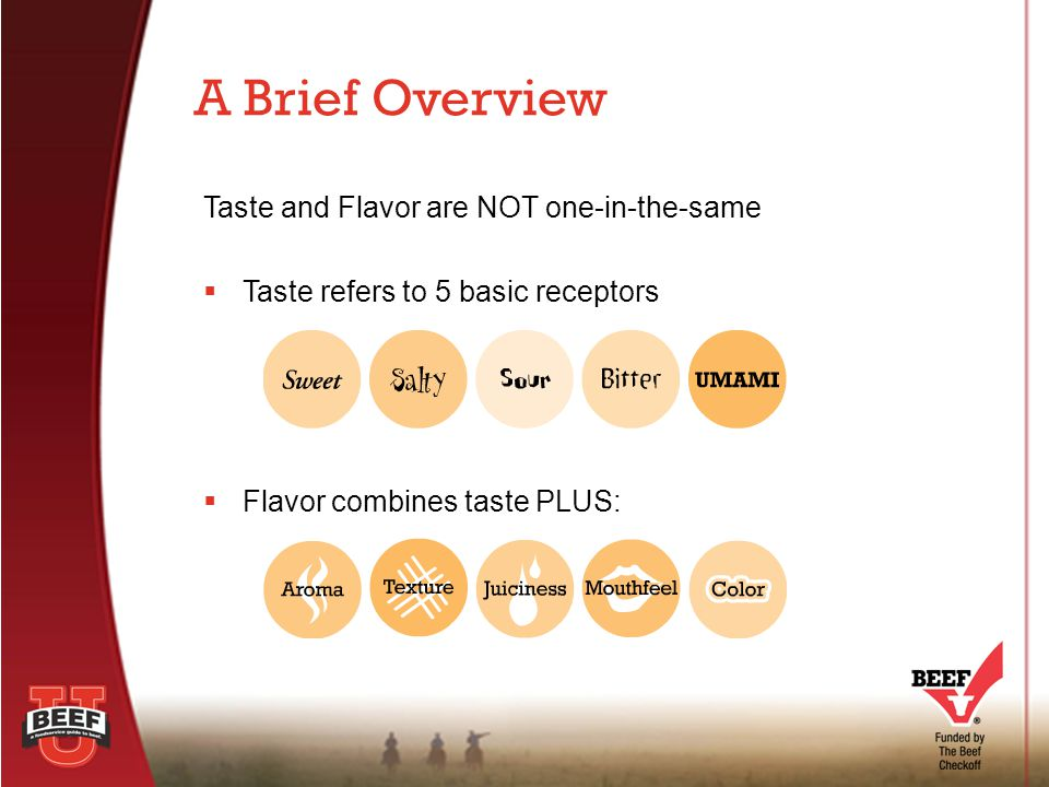 Taste and Flavor are NOT one-in-the-same  Taste refers to 5 basic receptors  Flavor combines taste PLUS: A Brief Overview